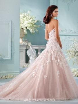 216241bk_wedding_dresses_2017-510x680